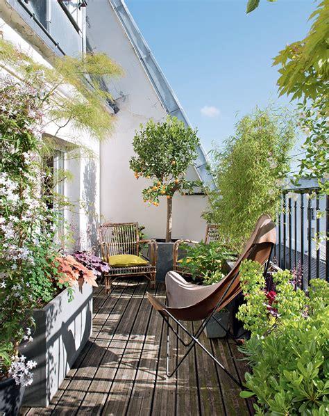 snob comme un pot de chambre terrasse ombragée les plantes à choisir