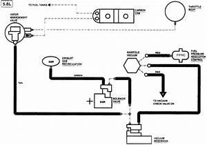 Vacuum Diagram 1989 Ford F250 5 8  Vacuum  Free Engine