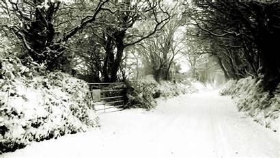 Winter Desktop Scene Scenes Widescreen Wallpapers Backgrounds