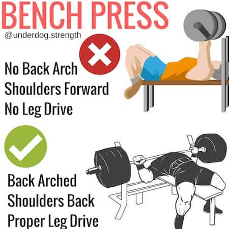 Bench Press Leg Drive by How To Bench Press Properly For Beginners Underdog