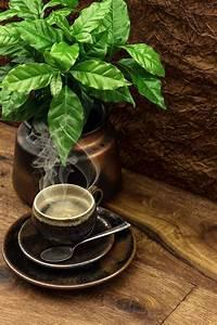 Pin by Vesna Sokolić on kava, čaj, porculan / coffee, tea | Food art photography, Discount ...