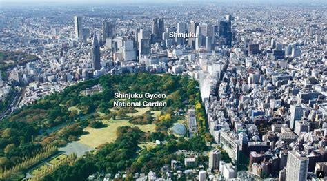 3 bedroom house floor plans the parkhouse shinjuku gyoen property central