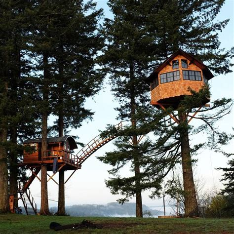 Man Builds Amazing Treehouse Home With Its Own Skatepark
