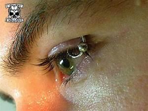 Image Gallery weird piercings