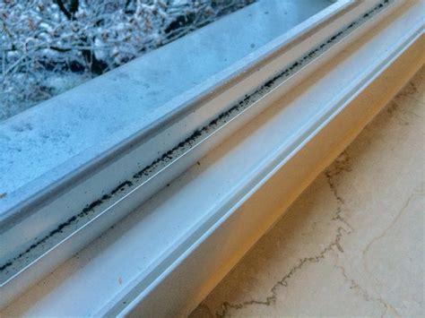 Wasser Im Fensterrahmen by Wasser Im Fensterrahmen Haustechnikdialog