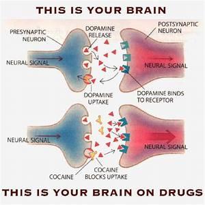 Rehabilitation and addiction: May 2011