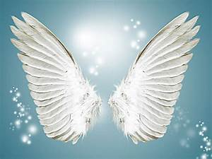 Angel Wings, White Angel Wings And Happy, White, Angel ...