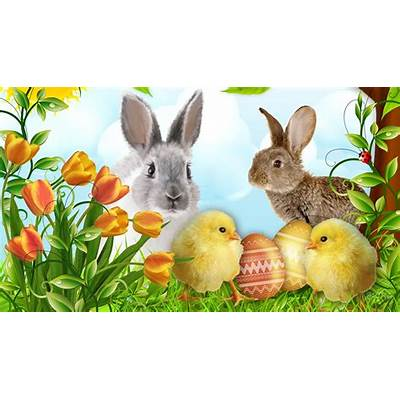 Happy Easter Cute Bunny HD Images Free Download