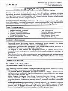 see our professional executive resume writing examples With professional executive resume
