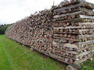 Garagentor Elektrisch Nachrüsten : raummeter holz preis brennholz augsburg brennholz allg u holzma scheitel brennholz forstkontor ~ Orissabook.com Haus und Dekorationen