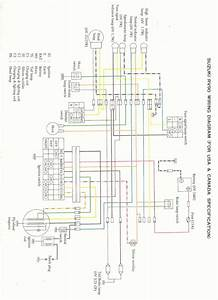 Ysr50 Wiring Diagram