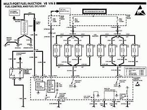 85 Corvette Fuel Pump Relay Wiring Diagram