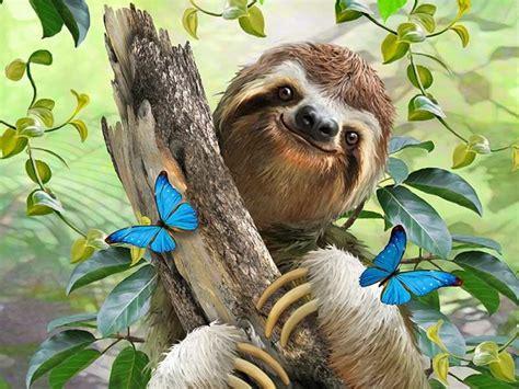 petjes  sloth  puzzle  pieces