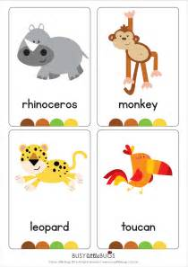 jungle animal flash cards automatic early literacy