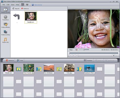 Features Of Any Video Editor