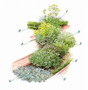 Kräuter Pflanzen Topf : aromatische kr uter mit vielen pflanzen kombinierbar ~ Lizthompson.info Haus und Dekorationen