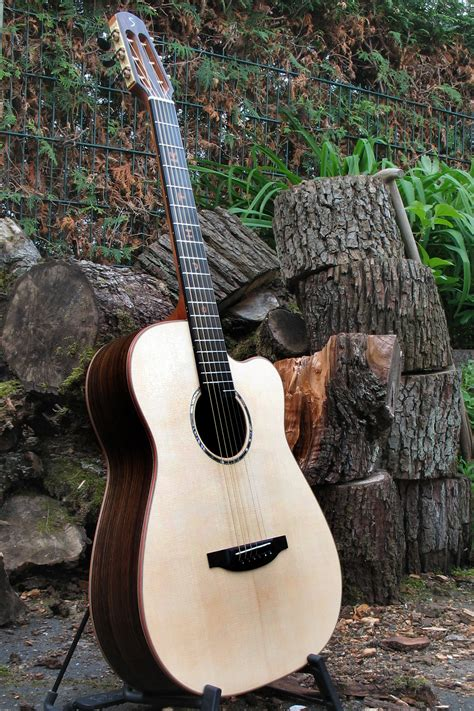Fingerstyle Guitar with Fretboard Inlays and Scheller ...
