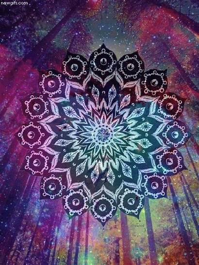 Mandala Psychedelic Tattoo Trippy Forest Gifs Mandalas