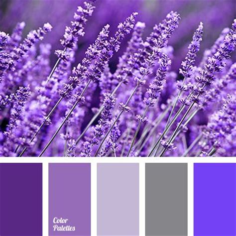 color palette  mosquito repelling plants lavender