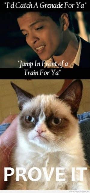 Funny Quotes Grumpy Cat Quotesgram
