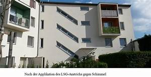 Kalk Gegen Pilze : anstrich gegen schimmel ~ Michelbontemps.com Haus und Dekorationen