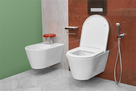 Add Bidet To Toilet by Toilet Suites And Bidets Should I Get A Bidet Centre