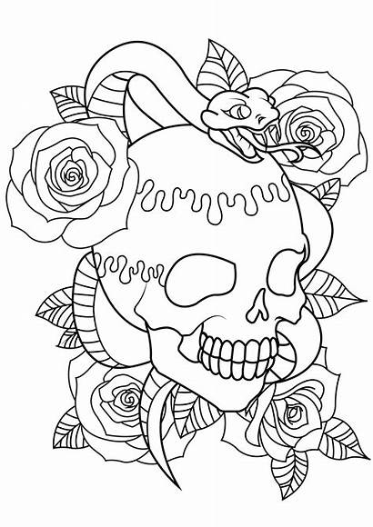 Coloring Skull Tattoo Snake Pages Roses Adults