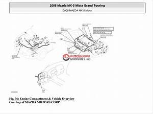 Mazda Mx5 Miata 2008-2009 Service Manuals