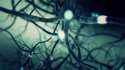 Learning Deep Neuron Solving Network Problem Synapse
