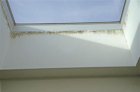 Schimmel An Der Decke by Schimmel An Der Decke Was Tun Schimmel In Der Garage