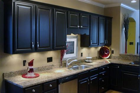 Painted Kitchen Cabinets Colors   Home Design and