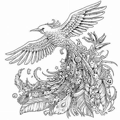 Coloring Pages Adult Bird Books Strange Animals