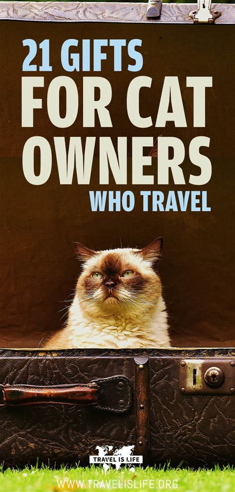 best for cat owners 21 gift ideas for cat owners who travel by travel is life