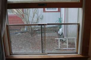 cat proof screens cat proof window screens a guide