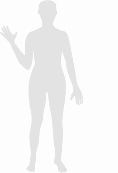 Human Gray Clip Clipart Clker Cliparts