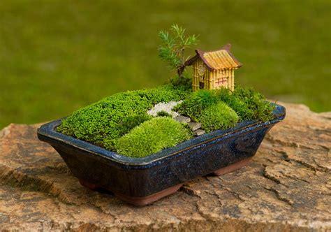 Pflanzen Für Miniaturgarten by Minigarten Japanisch Miniaturgarten Fairygarden
