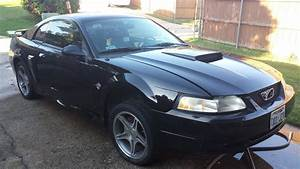 Expired - 1999 Mustang Gt - 35th Anniversary Limited Edition | Mustang Forums at StangNet