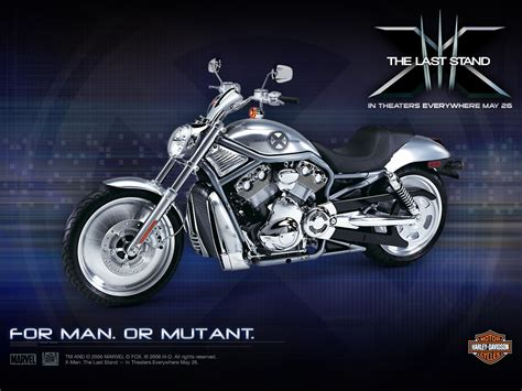 My Free Wallpapers  Vehicles Wallpaper  Harley Davidson