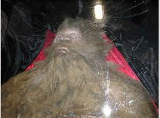 Rick Dyer Bigfoot killed Man Says He Killed Bigfoot