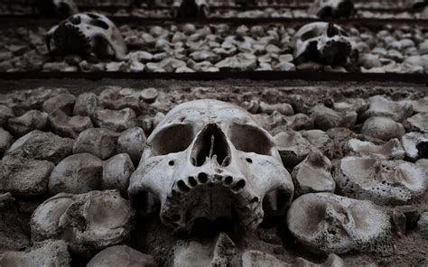 Scary Wallpaper Black And White by Black And White Skulls Wallpaper 59 Images