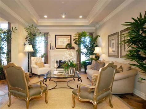 Family Room Tray Ceiling Decorating Ideas
