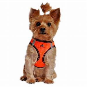 American River Top Stitch Dog Harness By Dogg
