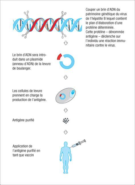 6 production de vaccins interpharma centre didactique en biotechnologie
