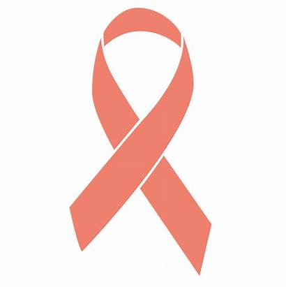 Cancer Ribbon Uterine Peach Awareness Ribbons Colors