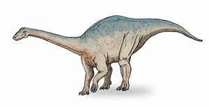 Riojasaurus - Redorbit