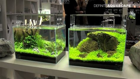 Aquascape Ada - aquascaping planted aquariums of aqua design amano