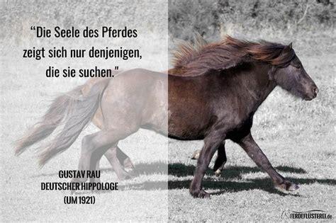 pferd schlapp und immer muede hilfe pferde tiermedizin