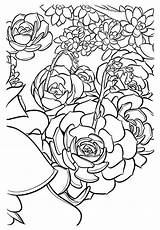 Coloring Pages Zodiac Signs Succulent Adult Succulents Cards Printable Sunshine Detailed Succulentsandsunshine Books Sheets Ends Getcolorings Super Mario Fun Stress sketch template