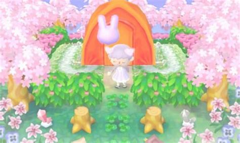 jordancrossing campsite animal crossing animal