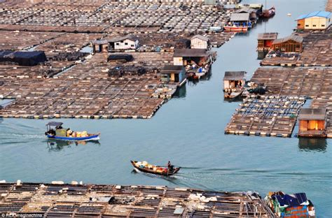 chinas tanka boat peoples floating homes daily mail